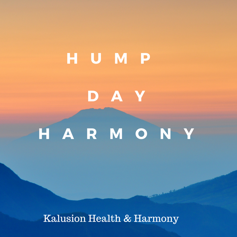 hump-day-harmony